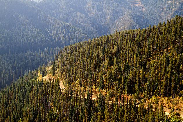 Idaho 2012