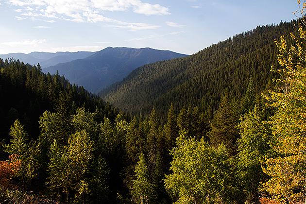 Idaho Fall