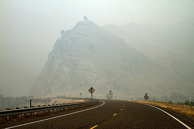 Tree Hill Smoke