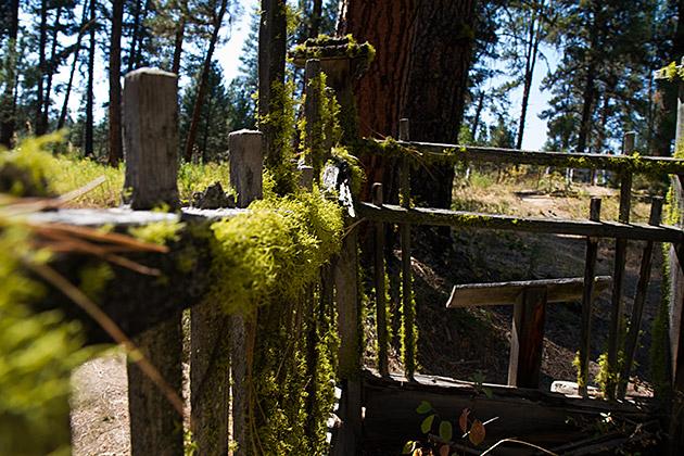 Idaho-Cemetery-Pioneer