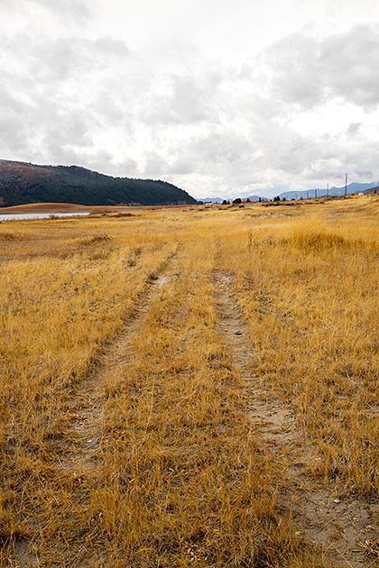 Saddler-Tracks